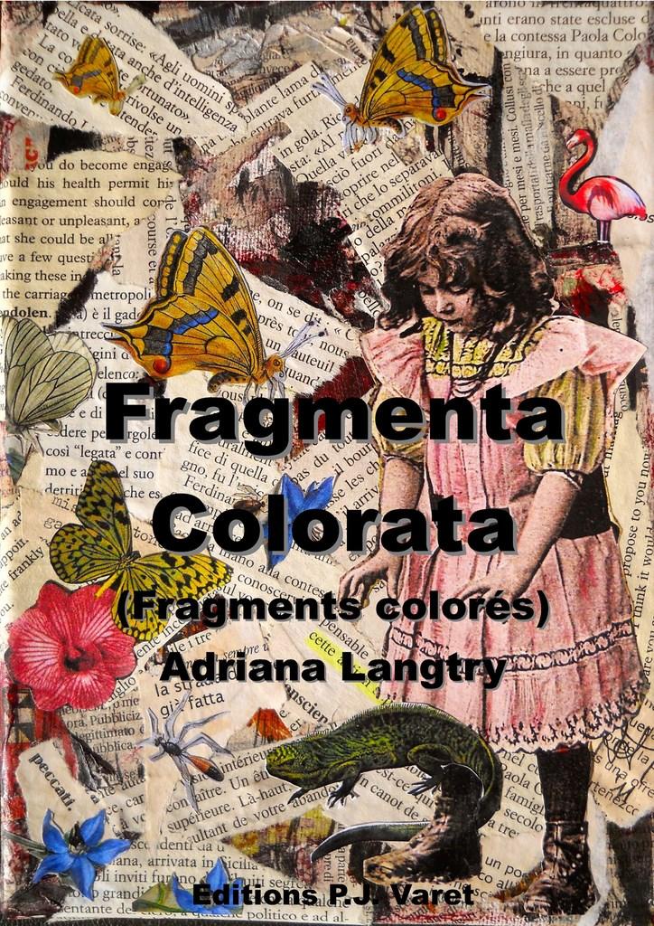 Fragmenta colorata (Fragments colorés) d\'Adriana Langtry ...